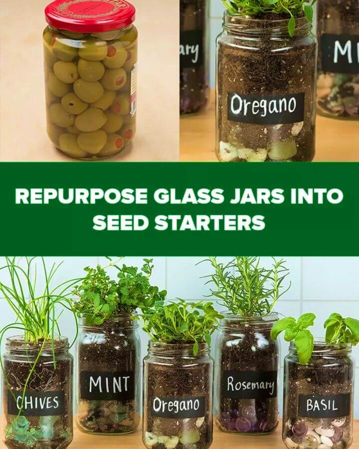Adorable DIY Herb Garden With Old Glass Jars