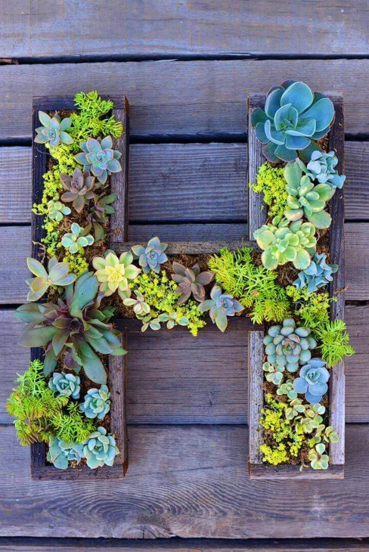 Adorable DIY Wall Mounted Succulent Letter