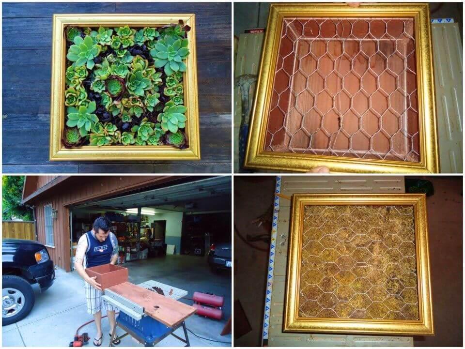 Amazing DIY Succulent Wall Art