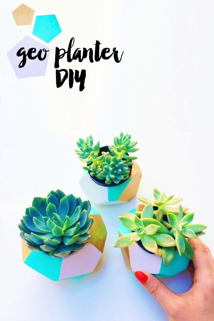 Awesome and Easy DIY Geo Planter