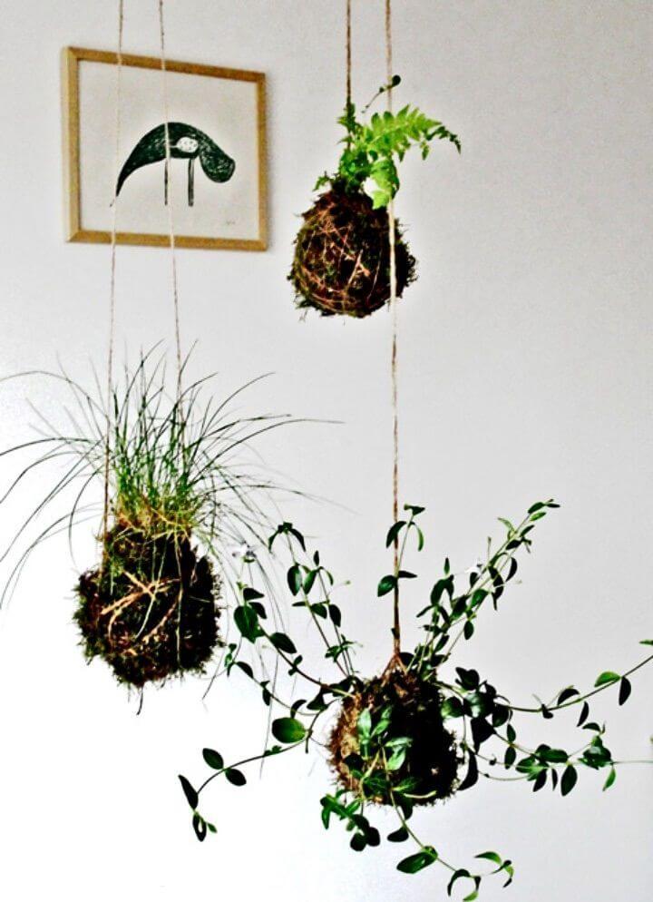 """Build a """"kokedama"""" String Garden"""