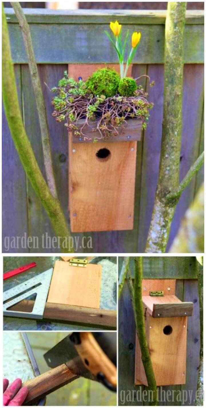 DIY Green Roof Birdhouse Tutorial
