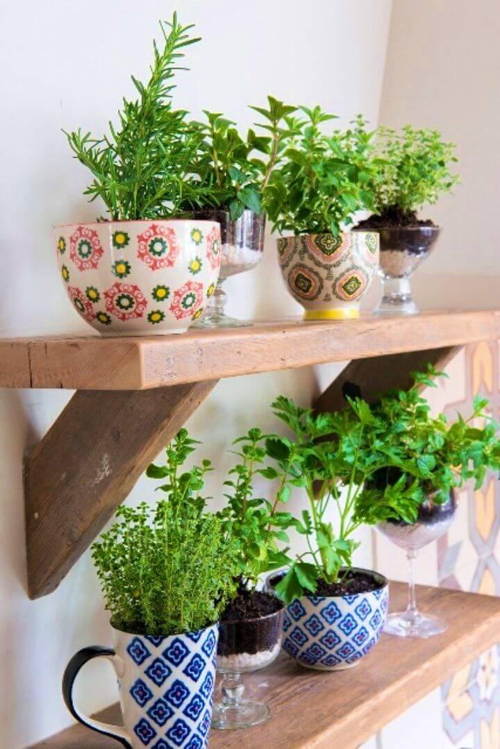 DIY Herb Garden Using Coffee Mugs