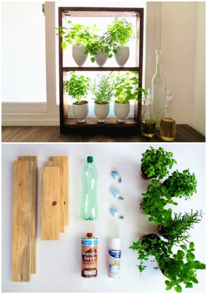 DIY Herb Garden from Kitchen Recyclables