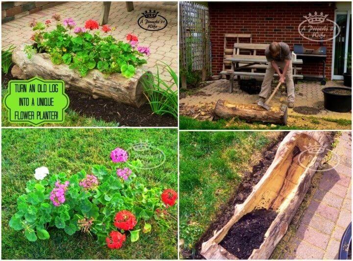 DIY Log Planter for Flowers