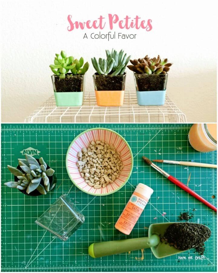 DIY Mini Succulent for Wedding Favors