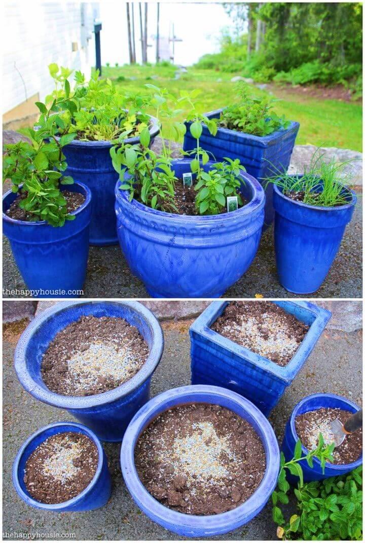 Easy DIY Kitchen Herb Garden in Deck Pots