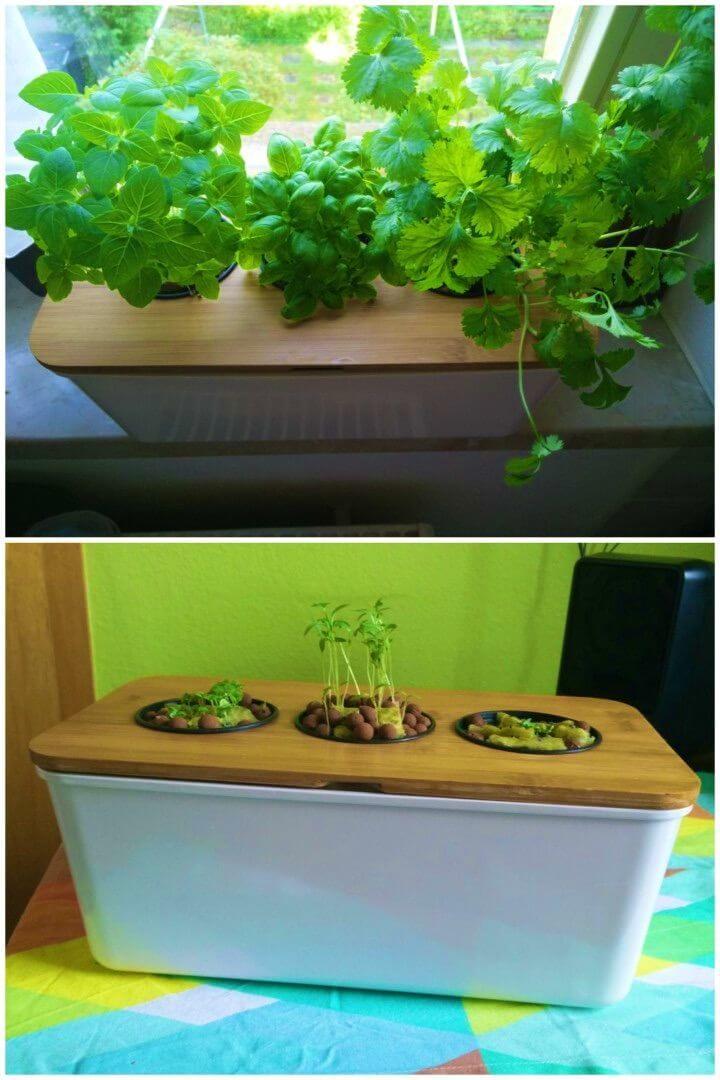 How to Build Windowsill Hydroponic Herb Garden