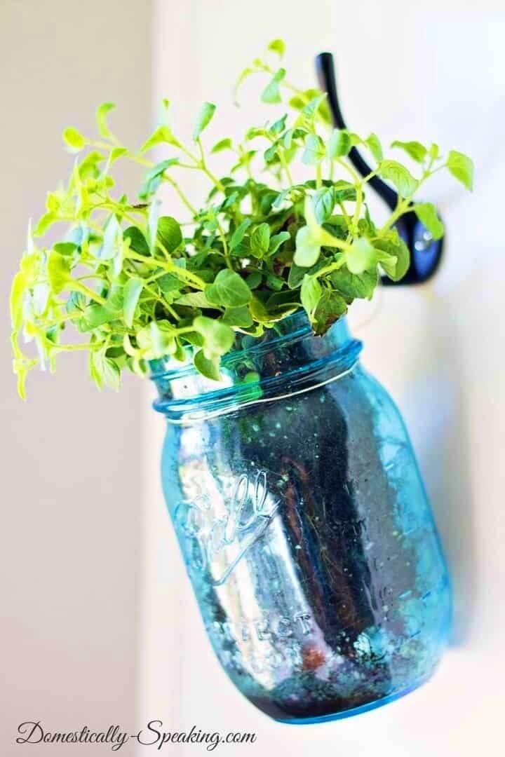 Make Hanging Herb Mason Jars Garden