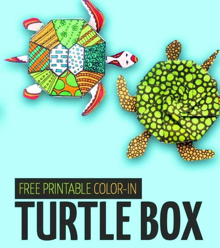 Make Turtle Template Coloring Page for Adults