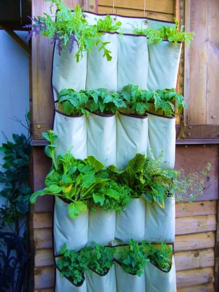Turn A Shoe Organizer Into Herb Garden