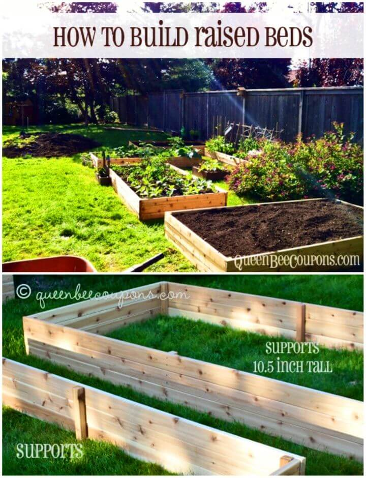 Build Raised Garden Beds For