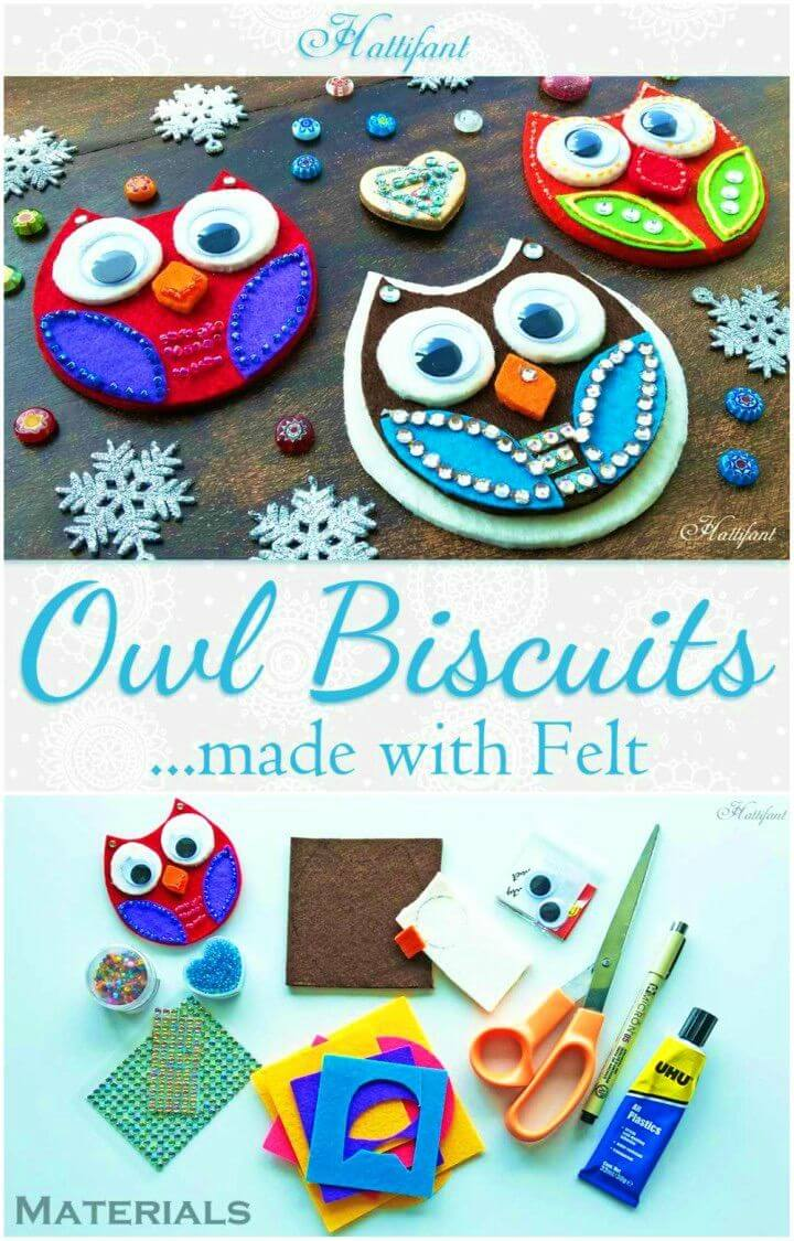 DIY Owl Biscuits Made with Felt