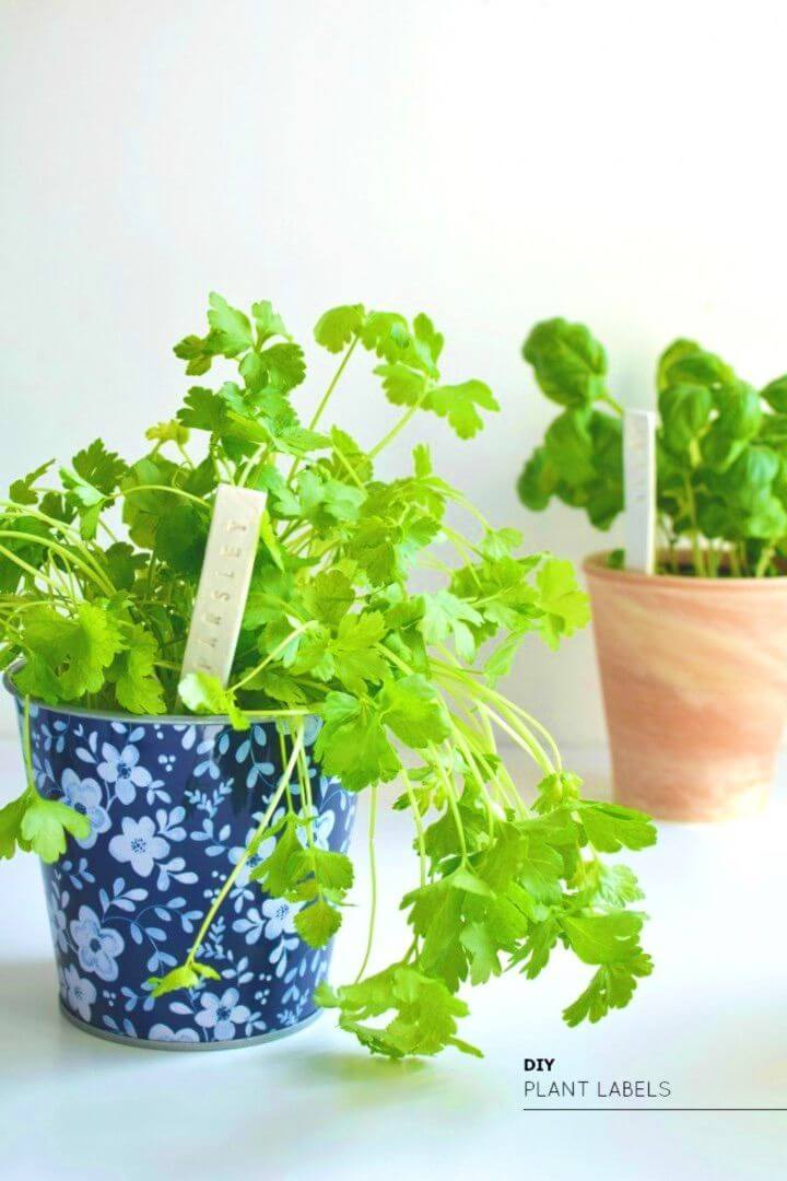 DIY Stamped Plant Labels hour Garden Project