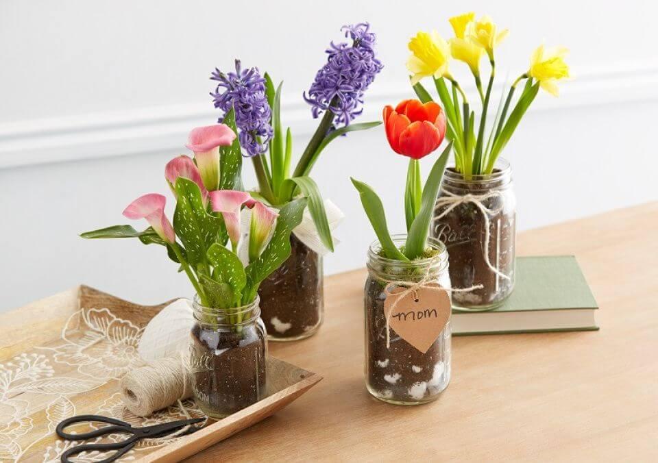 Easy DIY Flower Bulb Mason Jar Gifts for Mom