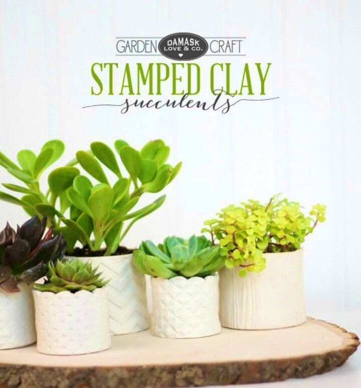 How to DIY Stamped Clay Succulent Pots
