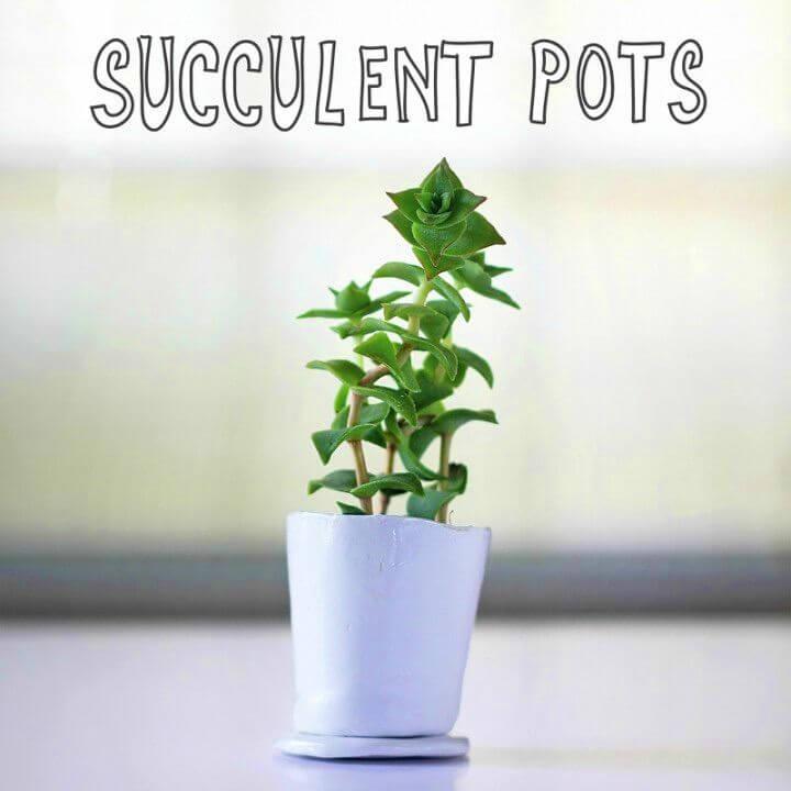 How to Make Succulent Pots