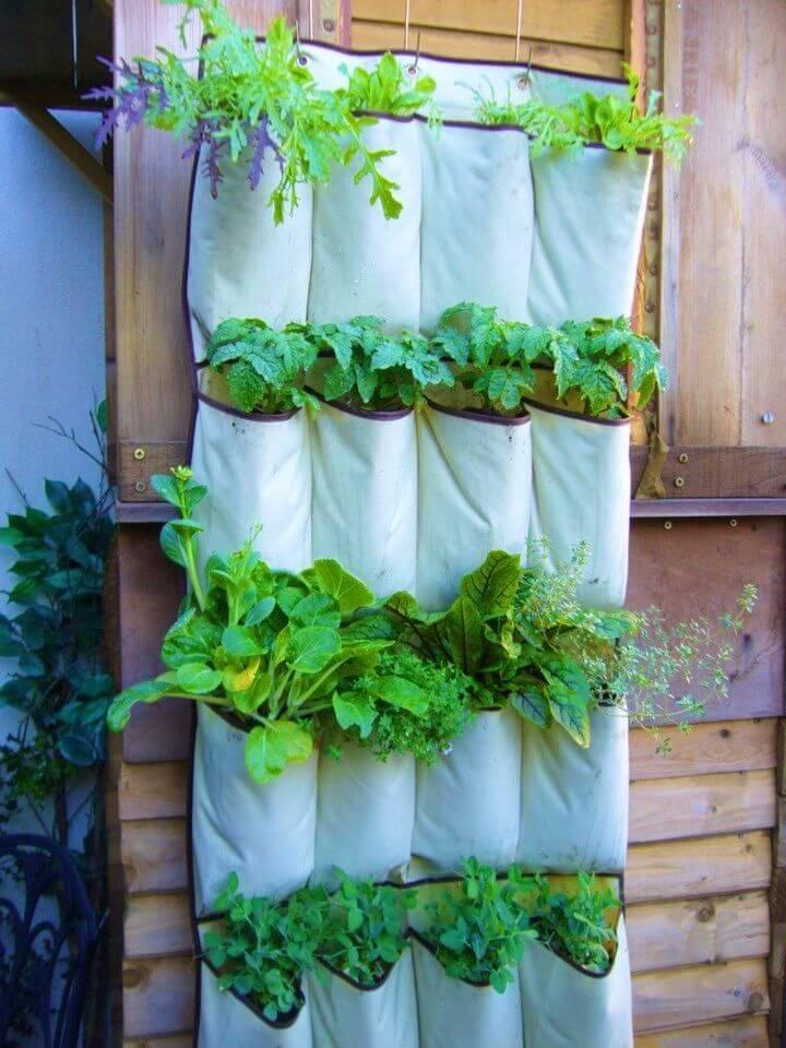Make a Small Garden Vertical Vegetables