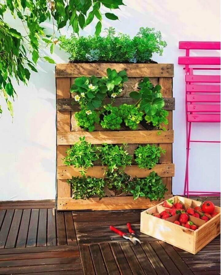 Build Pallet Vertical Garden