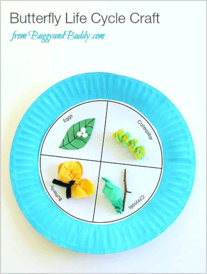 DIY Butterfly Life Cycle Paper Plate Craft