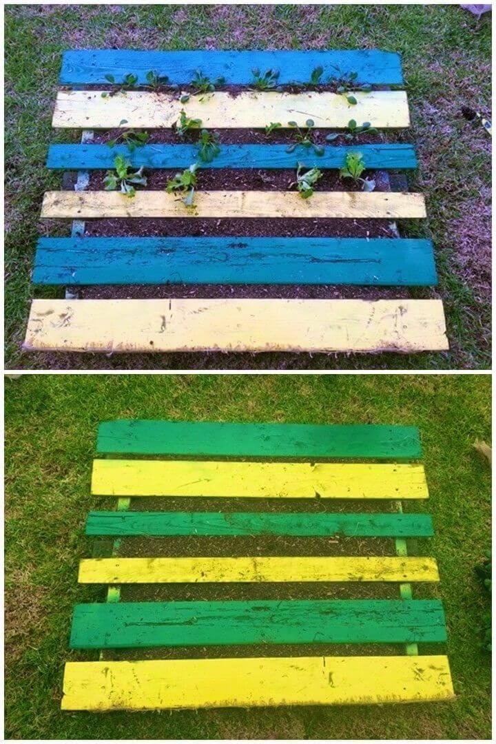 DIY Pallet Garden for Thirty Bucks