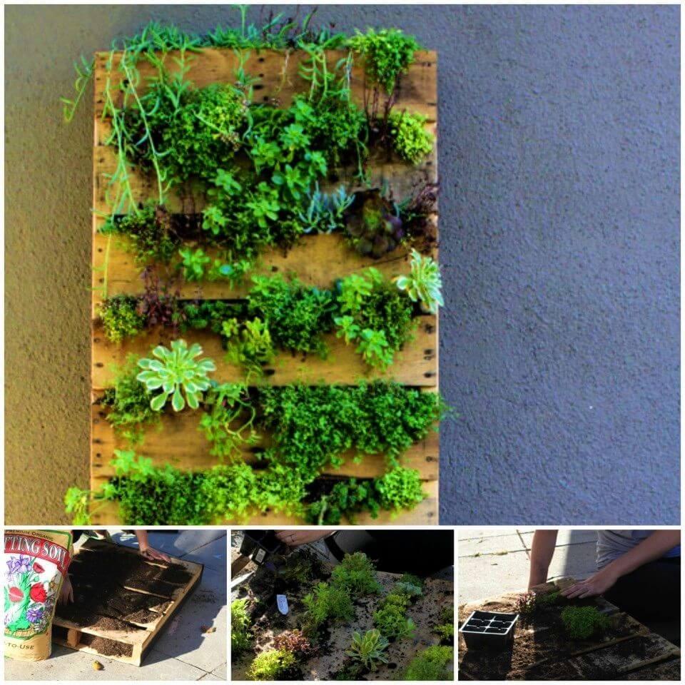 DIY Recycled Pallet Vertical Garden