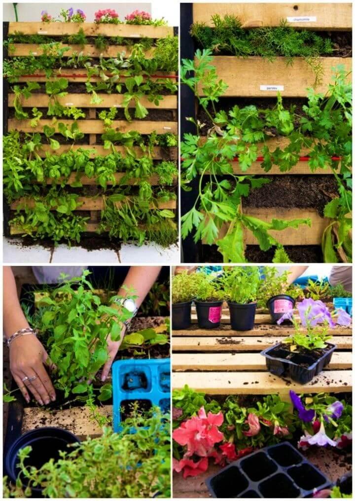 Easy to Make Pallet Garden