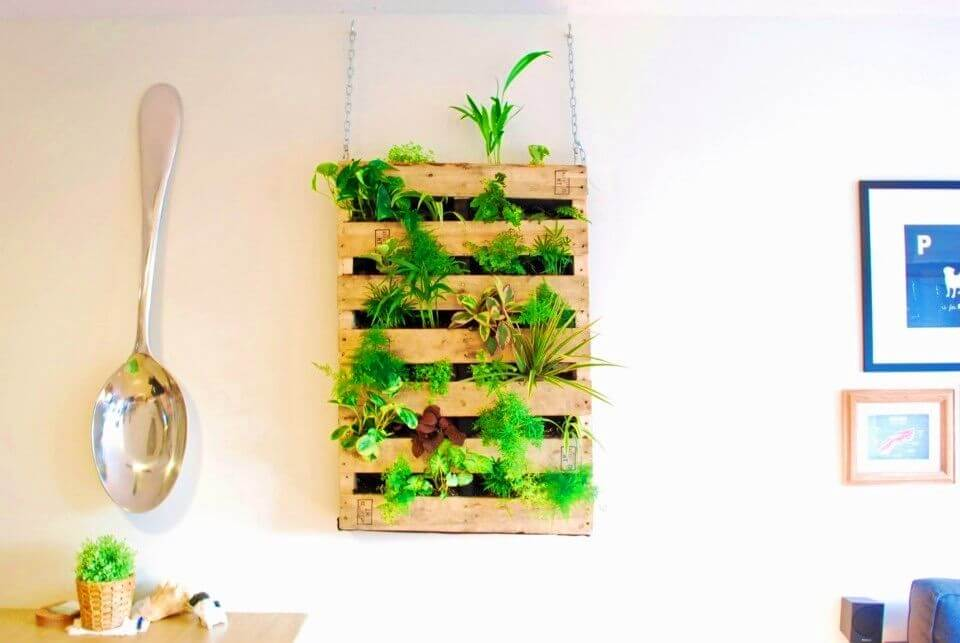 How to Build Pallet Living Wall