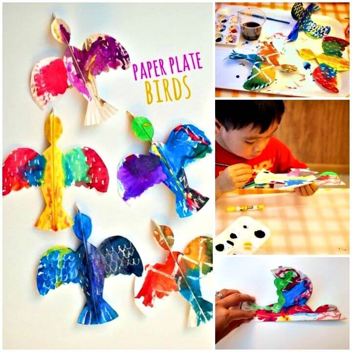 Make Colorful Paper Plate Birds