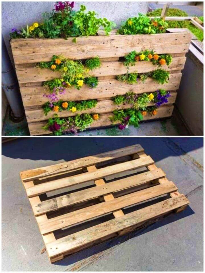 Make Your Own a Pallet Garden