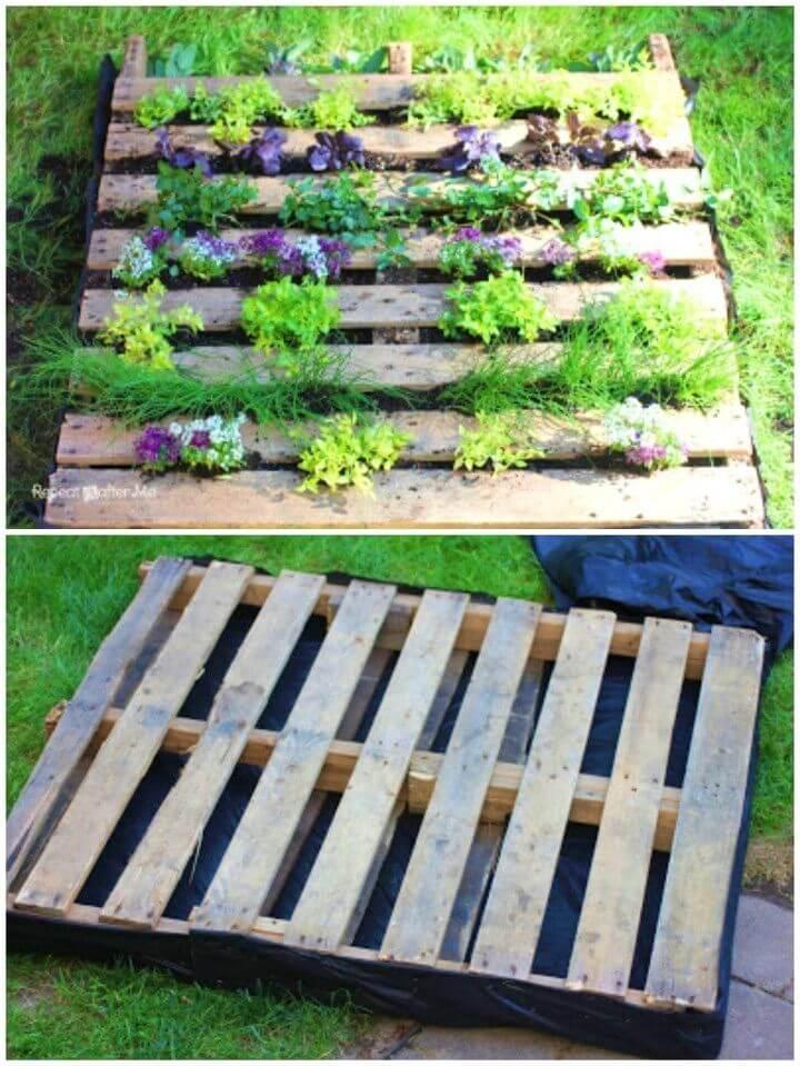 Make a Wooden Pallet Herb Garden