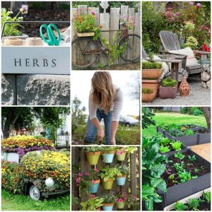 85 Easy and Cheap DIY Garden Projects